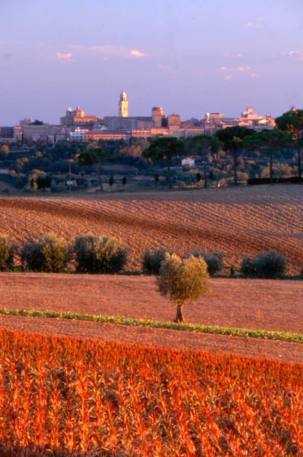 In provincia di Macerata buona qualità della vita anche per Italia Oggi