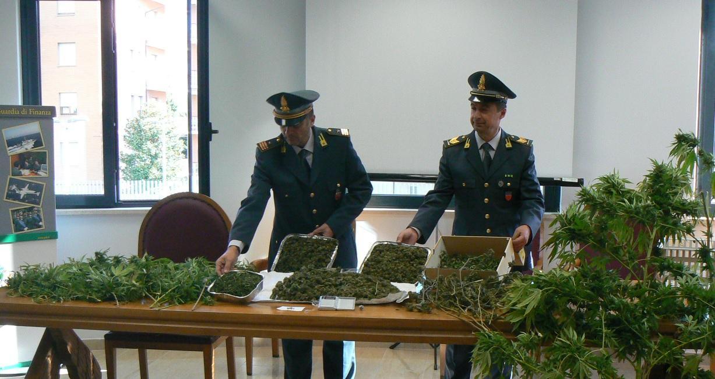 Guardia di Finanza: sequestrati 6,4 kg di marijuana, un arresto