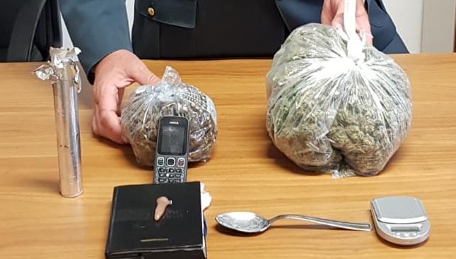 Produce marijuana in casa, Finanza arresta civitanovese
