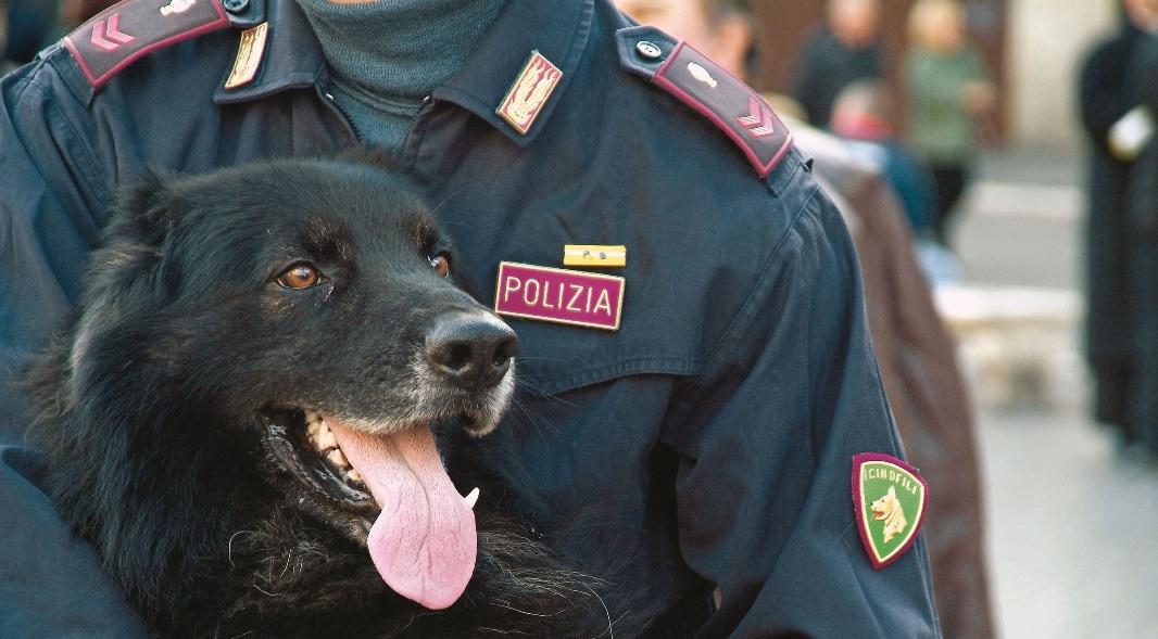 Macerata, Polizia blocca spacciatore nel parco