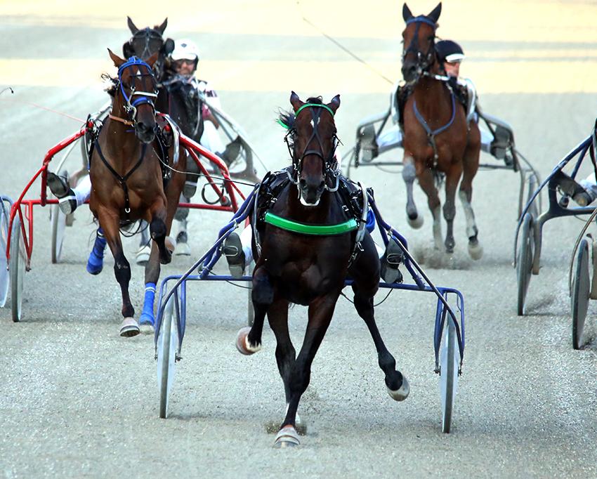 Ippodromo Montegiorgio, semifinali del Campionato Guidatori