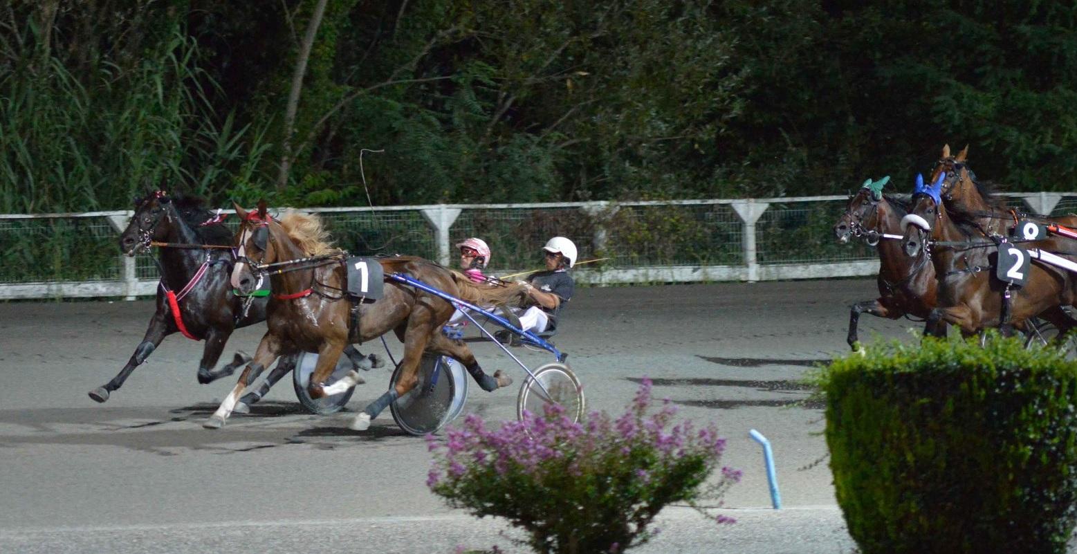 Ippodromo Montegiorgio, a Vecchione il Campionato Guidatori