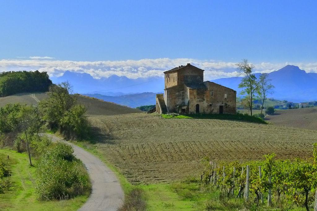 Identità contadine, a Macerata incontri sul mondo agricolo