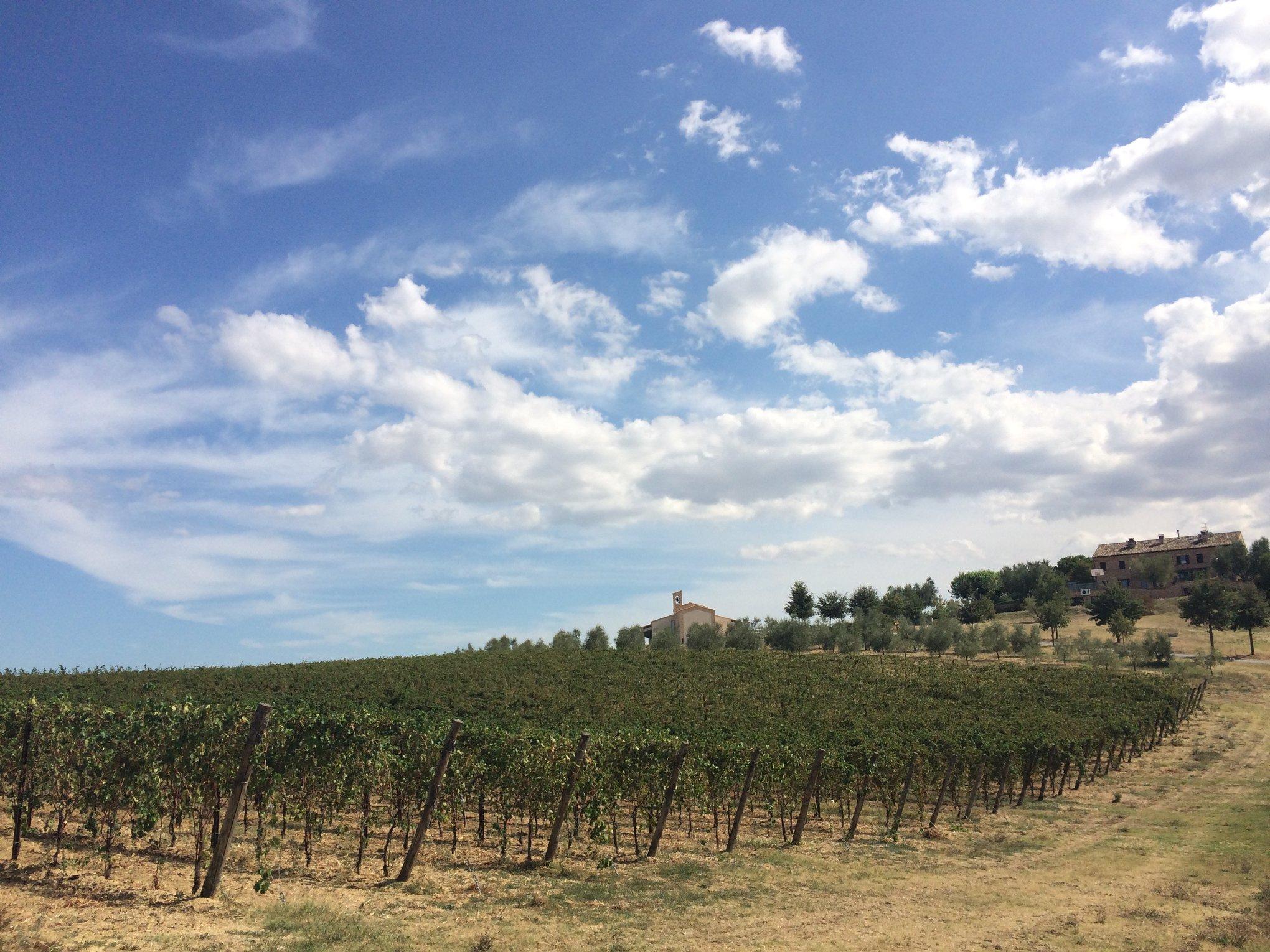 Corridonia, Primo maggio al Villaggio San Michele Arcangelo