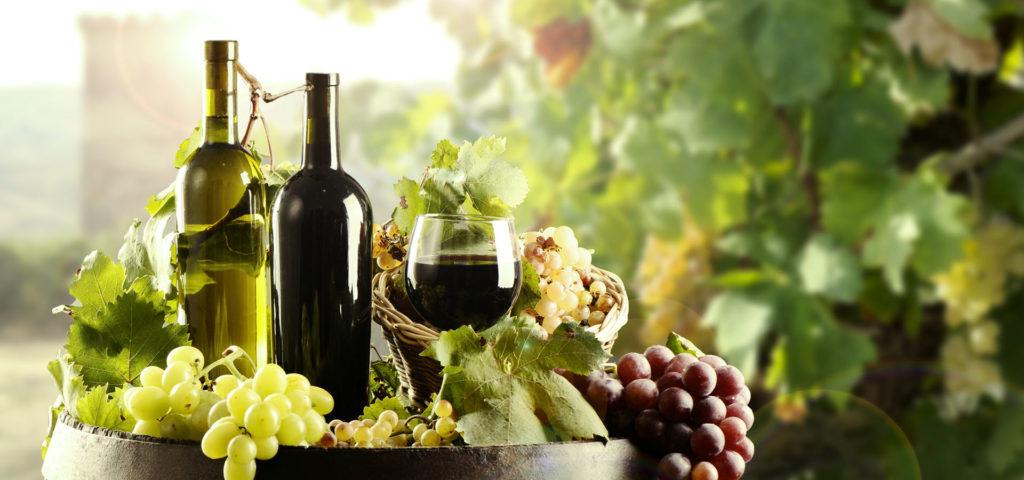 Alle Marche 7,9 milioni di euro per la campagna vitivinicola 2019