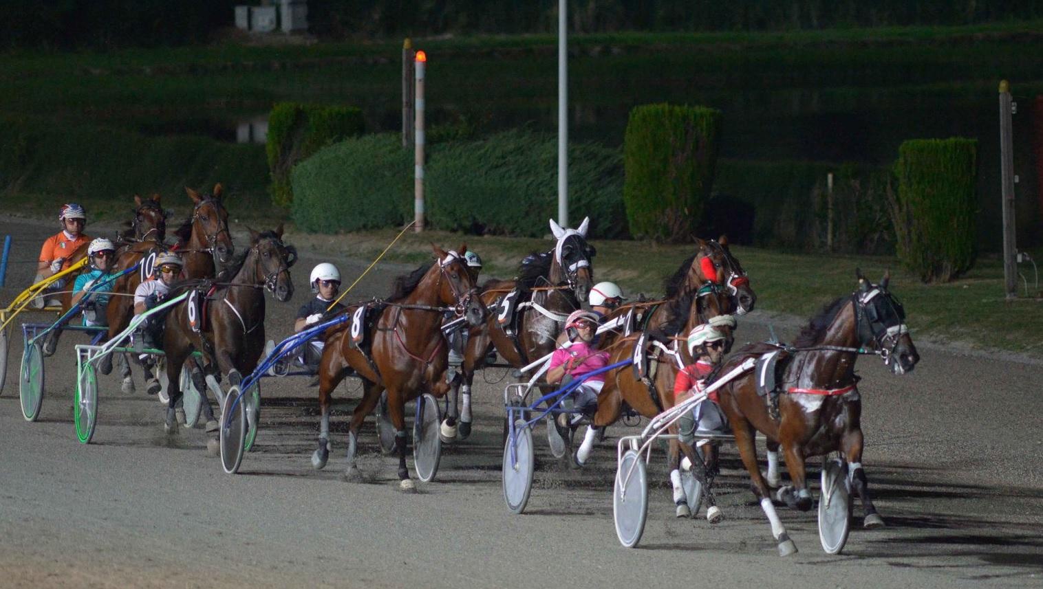 Corse in notturna all'ippodromo San Paolo di Montegiorgio