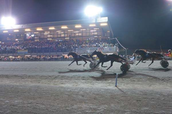 Ippodromo San Paolo di Montegiorgio, le corse del weekend