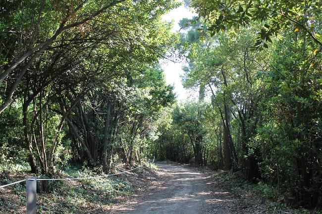 Macerata, Trekking Urbano nei parchi Villa Lauri e Fontescodella